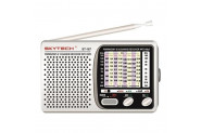 Skytech ST-167 Usb-Fm Radyo ve Mp3 Oynatıcı - Gri