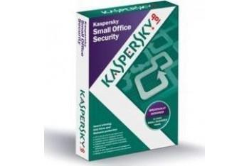 Kaspersky Small Office 110 1Yıl