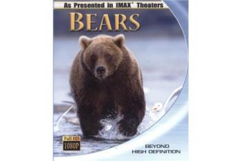 Bears Ayılar Blu-Ray Disc
