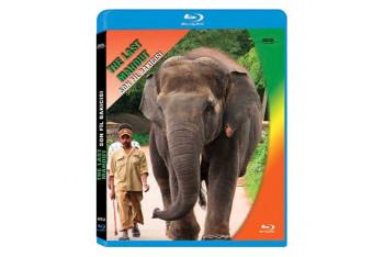 The Last Mahout Son Fil Bakıcısı Blu-Ray Disc
