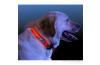 Buffer Işıklı Köpek Boyun Tasması