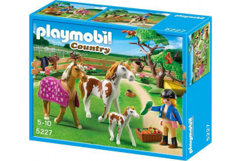 Playmobil 5227 Country Çimenlikte Atlar ve Tay