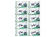 Selpak Antibakteriyel Islak Cep Mendili - 10'lu Paket