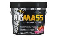 Big Joy Big Mass Gh Factors 3 kg Çilek