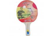Vertex Enjoy 1-Star Masa Tenisi Raketi Enjoy - Renkli