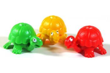 Piatnik Renkli Kaplumbağalar