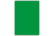 Bigpoint Fon Kartonu 50x70cm Koyu Yeşil 100'lü