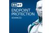 Eset Endpoint Protection Advanced 1Server 15Kullanıcı 3Yıl Dijital İndirilebilir Lisans ESET-OEM-EES-15-3