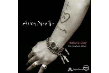 Aaron Nevılle - Nature Boy The Standarts Album